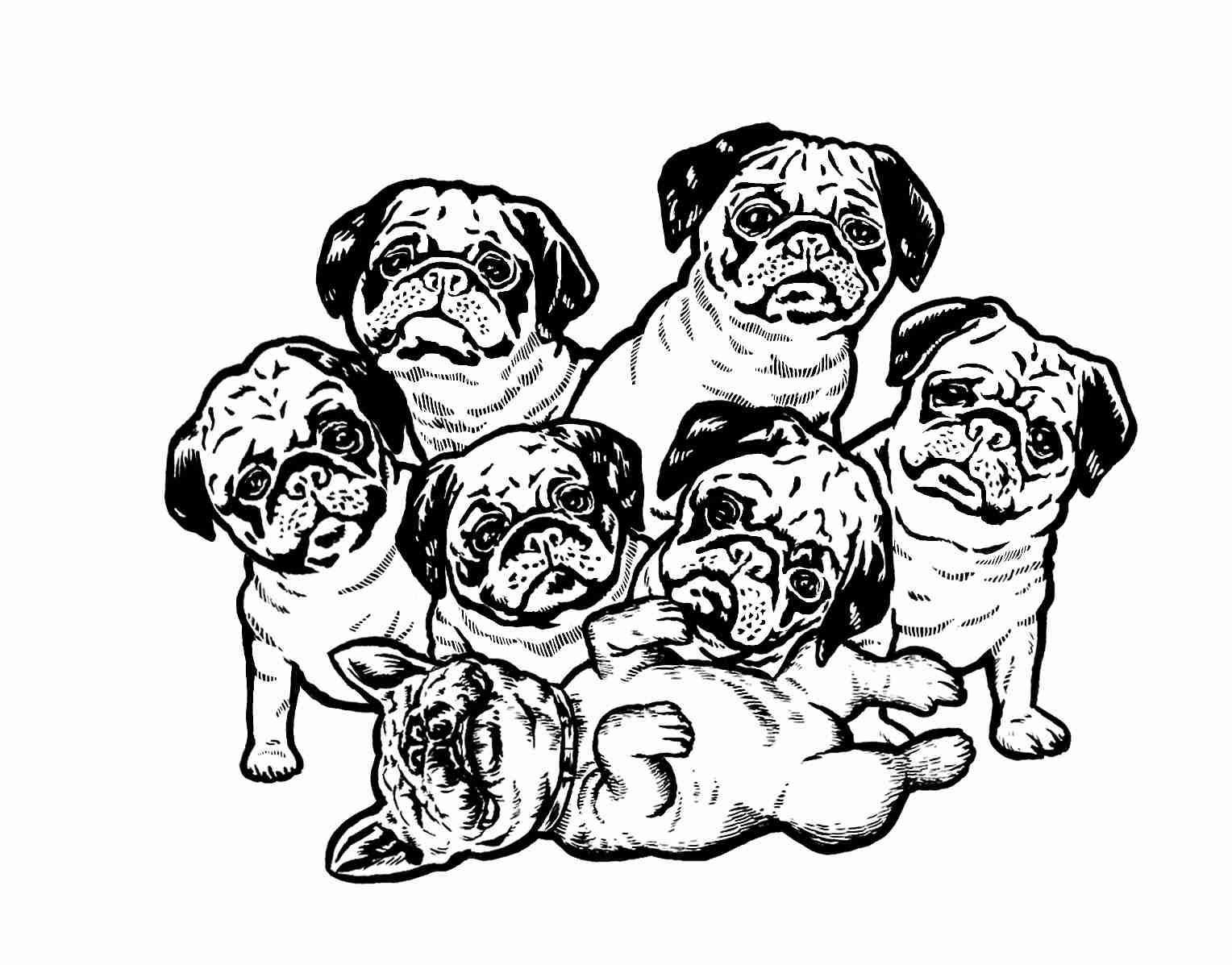 Pug Logo v3